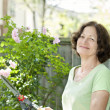 Senior woman pruning rose bush — Stock Photo