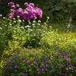 Stock Photo: Summer garden