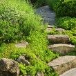 Garden path with stone landscaping — Stockfoto