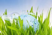 Blue Easter egg in green grass — Stock Photo
