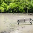 Flood in park — Stock Photo #27923407