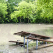 Flood in park — Stock Photo