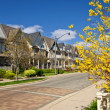 Stock Photo: Houses on residential street in spring