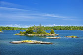 Islands in Georgian Bay — Stock Photo