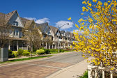 Houses on residential street in spring — Stock Photo