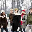 Group of young friends outside in winter — Foto de Stock