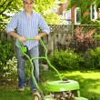 Man mowing lawn — Stock Photo #29584475