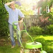 Man mowing lawn — Stock Photo #29584523