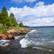 Rocky shore in Georgian Bay — Stock Photo #29585943
