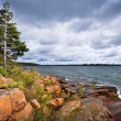 Rocky shore in Georgian Bay — Stock Photo #29586013