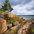 Rocky shore in Georgian Bay — Stock Photo #29586113
