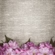 Cherry blossoms on linen background — Stock Photo