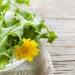 Dandelions greens and flowers — Stock Photo
