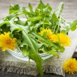 Stock Photo: Dandelions greens and flowers