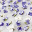 Candied violets — Stock Photo #39354179