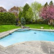 Stock Photo: Swimming pool in backyard