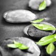 Stones with green leaves and water drops — Stock Photo #39354839