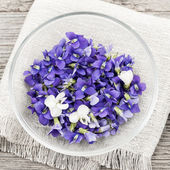 Edible violets in bowl — Stock Photo