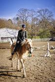 Young girl riding horse — Stock Photo