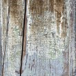 Old painted distressed wood background — Stock Photo #39361389