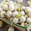 Basket of small turnips — Stock Photo #39362695