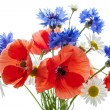 wildflower bouquet — Stock Photo