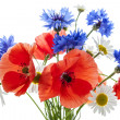Wildflower bouquet — Stock Photo #43171501