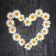 Daisy heart on dark wood — Stock Photo