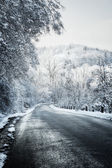 Winter road in forest — Stock Photo