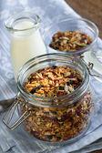 Homemade toasted granola — Stock Photo
