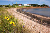 береговая линия острова принца эдуарда — Стоковое фото