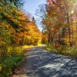 Road in fall forest — Stock Photo #47375849