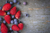 Wild berries on wood background — Stock Photo