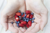 Hands holding berries — Stock Photo