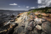 Rocky shore of Georgian Bay — Stockfoto