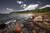 Rocky shore of Georgian Bay — Stock fotografie