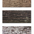 Tree bark banners set — Stock Photo