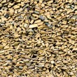 Stock Photo: Woodpile background