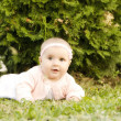 Baby girl in the grass - Stock Photo