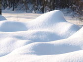 Fresh snow cover — Stock Photo