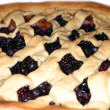 Fresh dark blue berry pie — Stock Photo