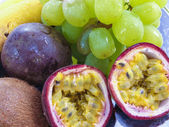 Diverse frukter — Stockfoto