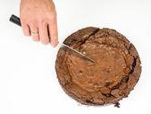 Fresh chocolate cake — Stock Photo