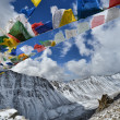 The Himalayan View — Stock Photo