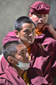 Young Monks — Stock Photo