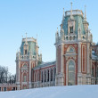 Stock Photo: Main palace of Tsaritsyno estate