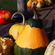 Decorative pumpkin — Stock Photo