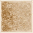 Texture sepia — Stock Photo