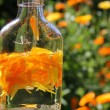 Natural medicine marigold — Stock Photo