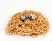 Pasta nest — Stock Photo